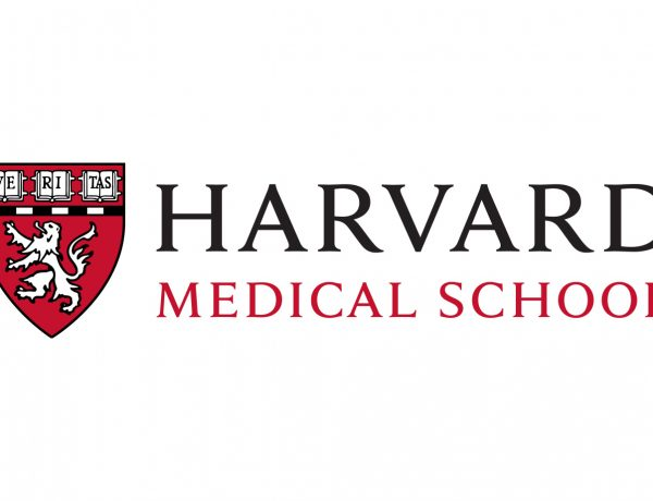 Pyramide für gesunde Ernährung der Harvard Medical School