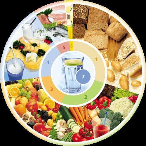 DGE Ernährungskreis